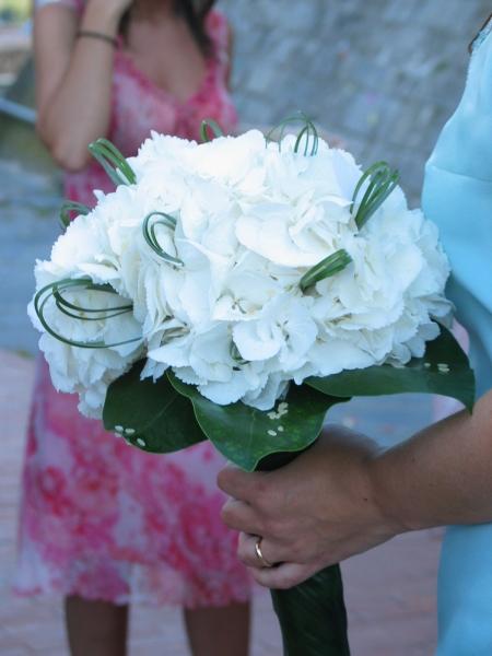 Bouquet Ortensie E Orchidee : Bouquet con le ortensie quante di voi organizzazione